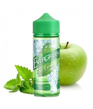 Evergreen Apple Mint Aroma 30 ml in 120 ml Bottle Shake and Vape