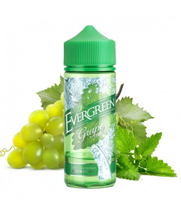 Evergreen Grape Mint Aroma 30 ml in 120 ml Flasche Shake and Vape